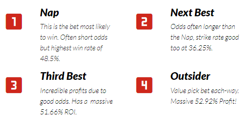 racingwins type of bets